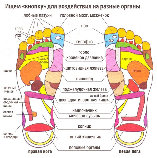 http://hochumassazh.ru/wp-content/uploads/2013/10/eabtqVg7RwE.jpg