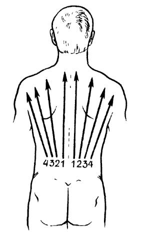 Предварительный массаж спины