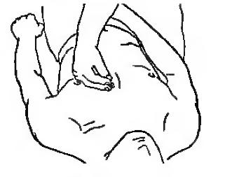 Кругообразное разминание клювовидной кистью