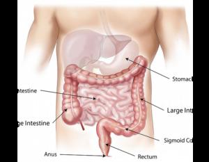 Массаж желудка, толстой кишки